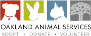 Oakland Animal Services Community Forum